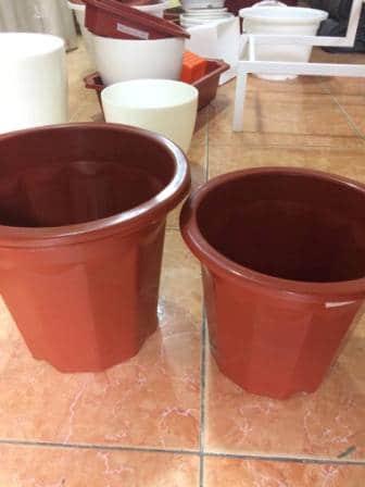 Chậu nhựa trồng cây các loại