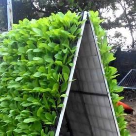 Kệ trồng cây bằng inox