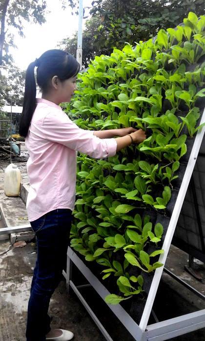 Khung treo túi vải bằng inox - Giá kệ trồng cây
