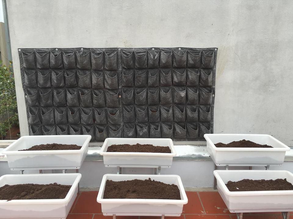 Túi trồng cây treo tường 1m2
