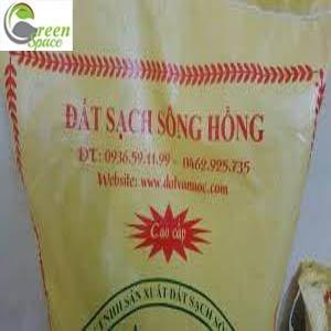 dat-trong-cay-song-hong
