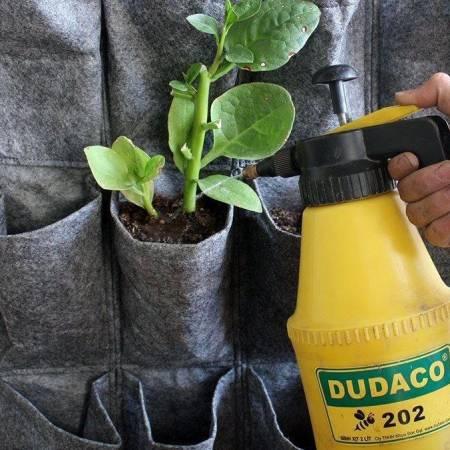 Kỹ thuật tưới cây cho túi vải trồng cây