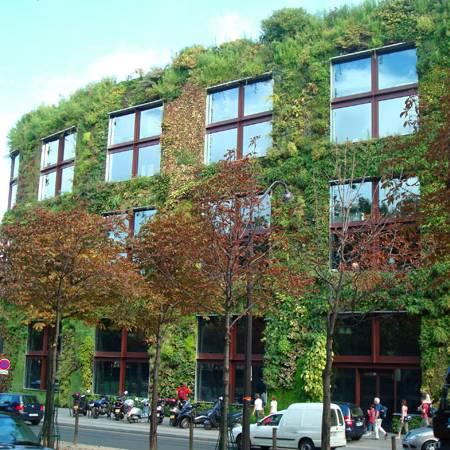 Cách làm vườn thẳng đứng với túi vải trồng cây