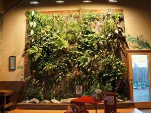 vườn tường với túi vải trồng cây