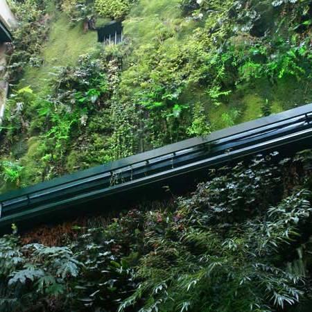 hệ thống thủy lợi cho túi vải trồng cây