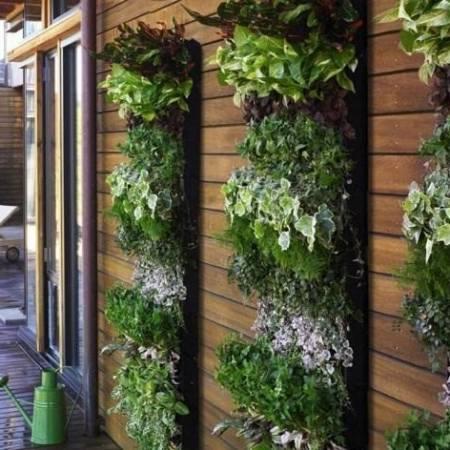 Cách sử dụng túi vải trồng cây