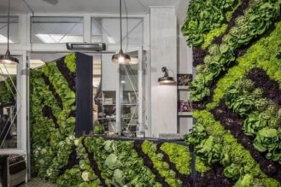 Làm vườn tường đẹp trong nhà bạn