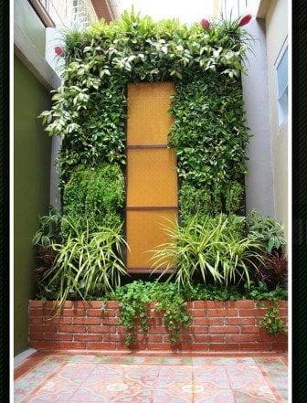 Ngon bổ rẻ với vườn rau xanh tự thiết kế