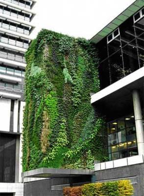 Thiết kế vườn tường với túi vải trồng cây