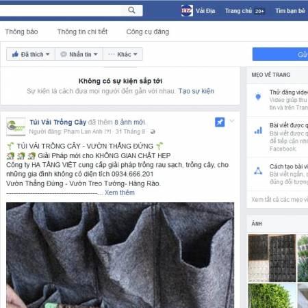 Túi vải trồng cây trên facebook