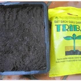 Đất giàu dinh dưỡng Tribat