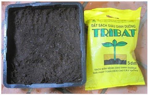 Đất sạch tribat dinh dưỡng 5dm3