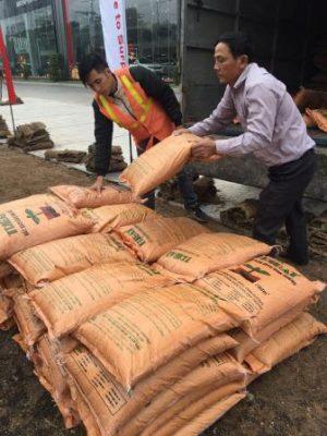 Đất trồng cây cho dự án
