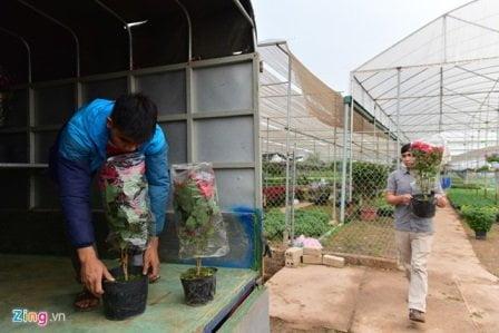 Giao nhanh hàng hoa tại Hà Nội
