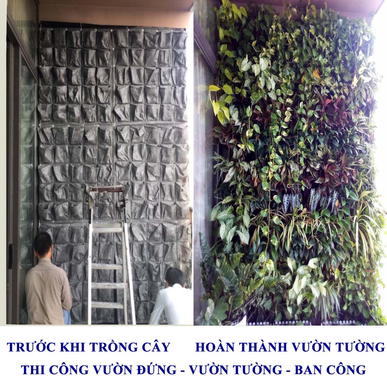 Túi vải trồng cây các loại thi công vườn tường
